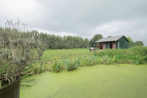 Koetshuis vrijstaand midden in de polder1